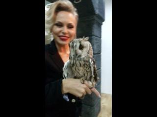 Olesiya Leonenko (photo shoot with an Owl Sonya:))